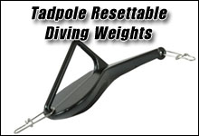 Ressettable Dive Weights